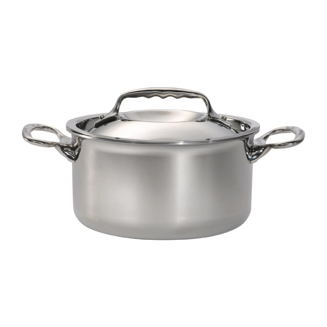 Image of DeBuyer Affinity Stainless Steel Stew Pan With Lid 24 cm