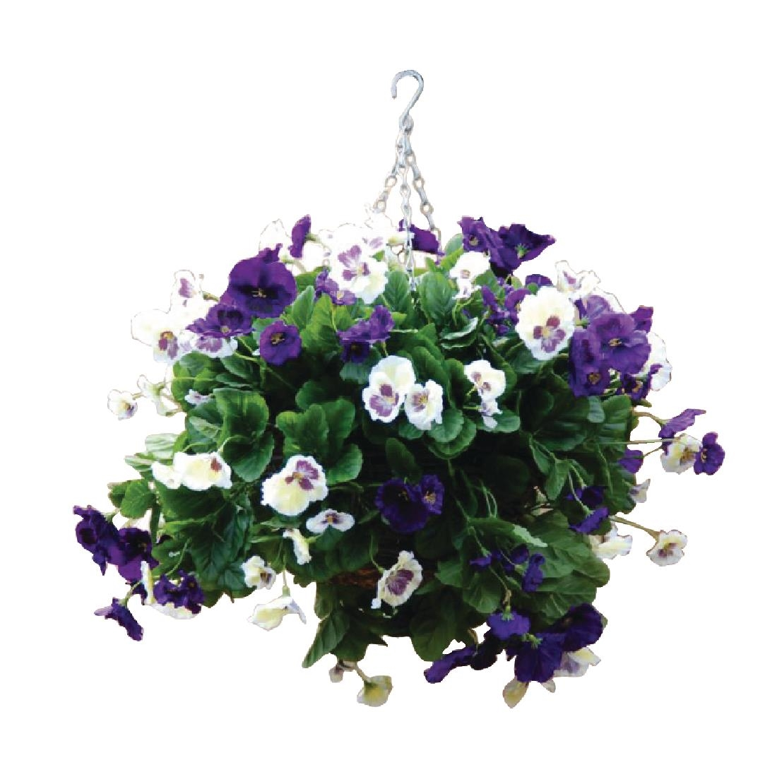Image of 22 Purple and White Pansy Ball