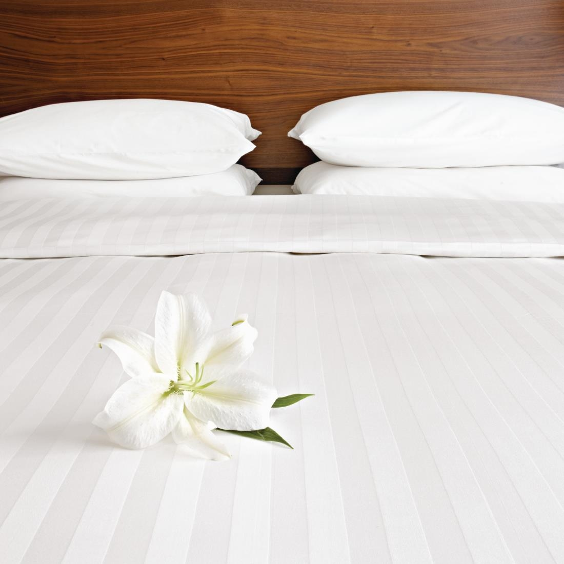 Image of Mitre Comfort Satin Housewife Pillowcase Oatmeal Pack of 2